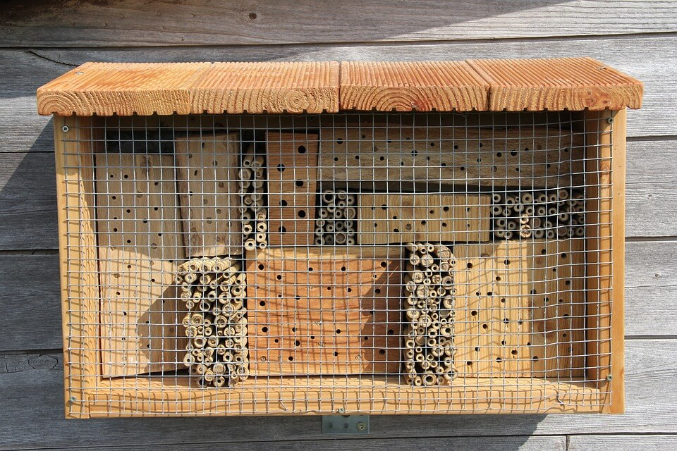 Best Mason Bee Houses