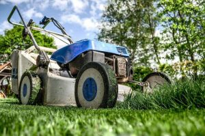 How To Kill Your Grass? Kill Unwanted Grass In Your Yard