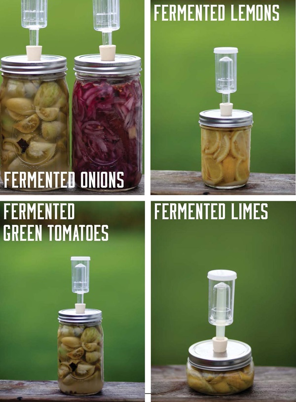 Fermented Foods List: Health Benefits of Fermented Foods