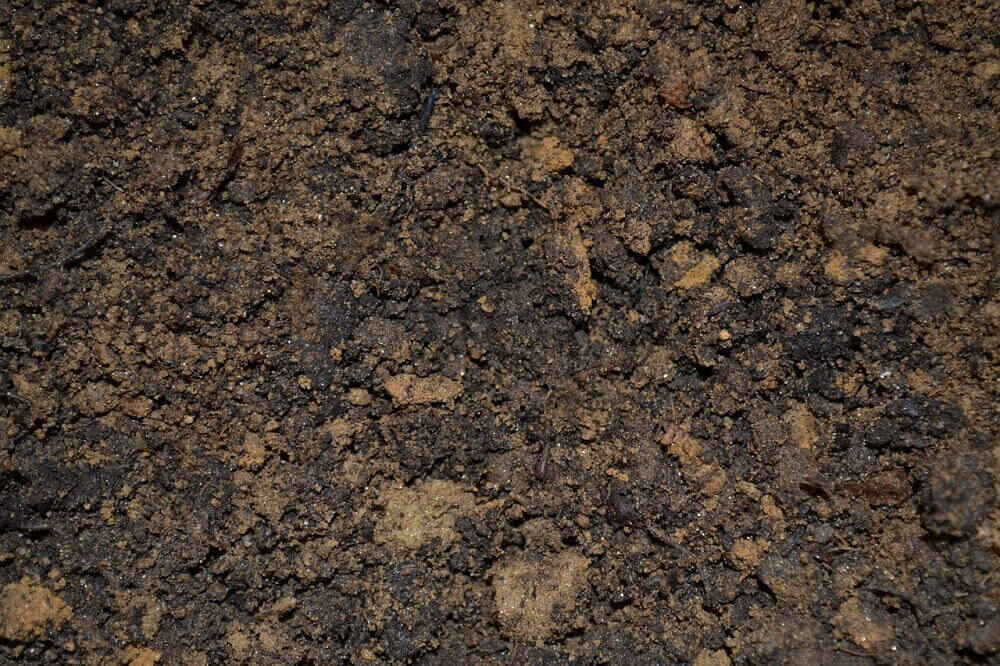 How To Add Microbes To Your Soil